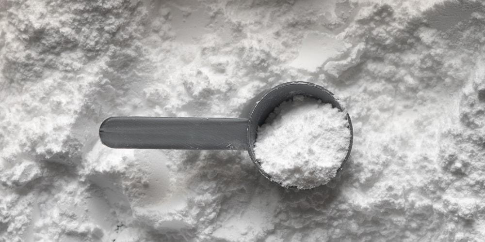 Proteinpulver Herstellung